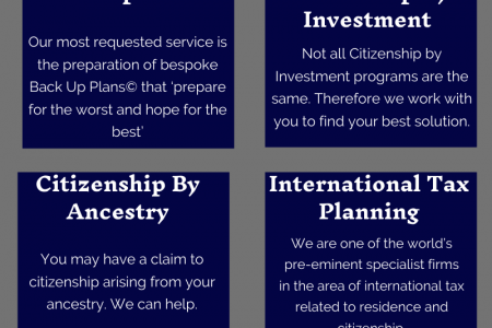 International Tax And Immigration Advisors Infographic