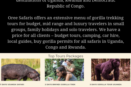 Introduction to Oree Safaris Infographic