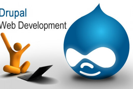 Invest In Drupal Web Development Services to Take Your Business to the Next Level! Infographic