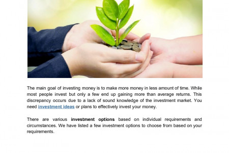 Investment Ideas to Make More Money Infographic