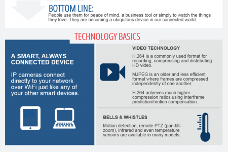 IP Cameras 101 Infographic