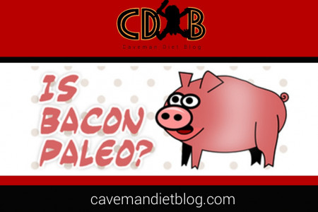 Is Bacon Paleo? Infographic