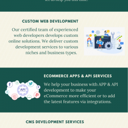 Is It Important to Hire Bigcommerce Expert Developer?