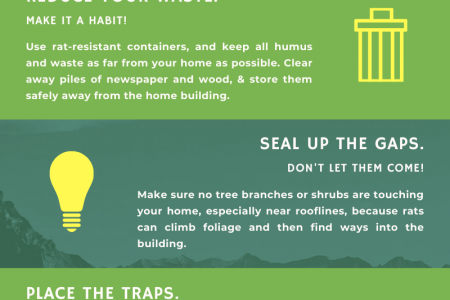 Is There A Way To End A Rat Infestation? Infographic