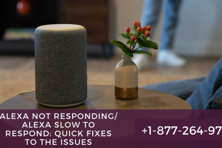 Is your Alexa Not Responding | Alexa Slow to Respond – Get Quick Help Anytime Infographic