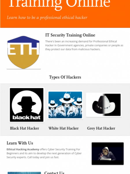 IT Security Training Online Infographic