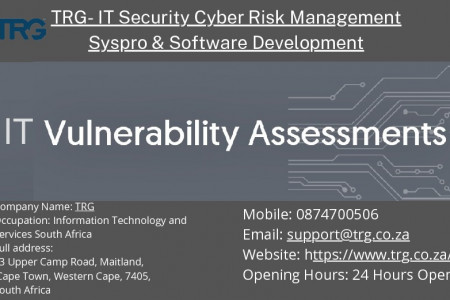 IT Vulnerability Assessment Infographic