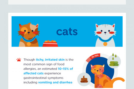 Itchy Pet? Food Allergies May Be to Blame Infographic