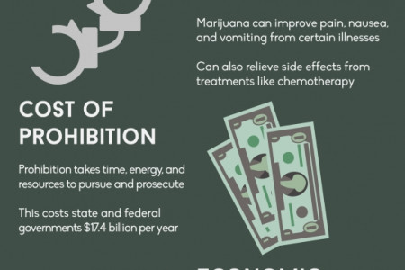 It's Legal-Now What? Get Started in Cannabusiness Infographic