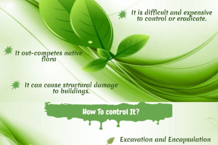 Japanese Knotweed - Problem and Control Methods Infographic