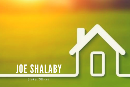 Joe Shalaby Infographic