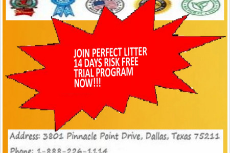 Join Perfect Litter For 14 Days Risk Free Trial Program Infographic