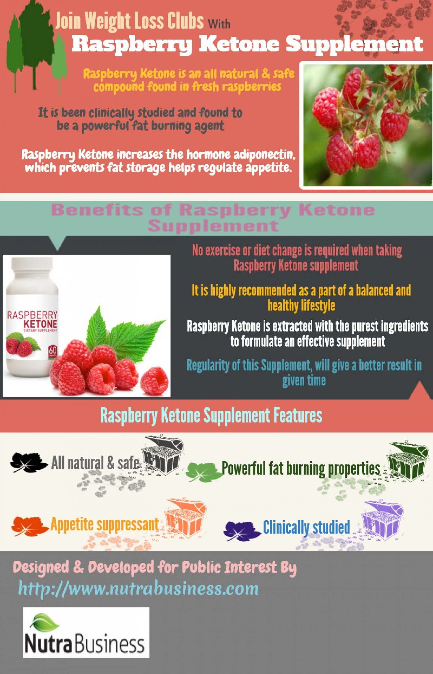 Join weight loss club with raspberry Ketone Supplement Infographic