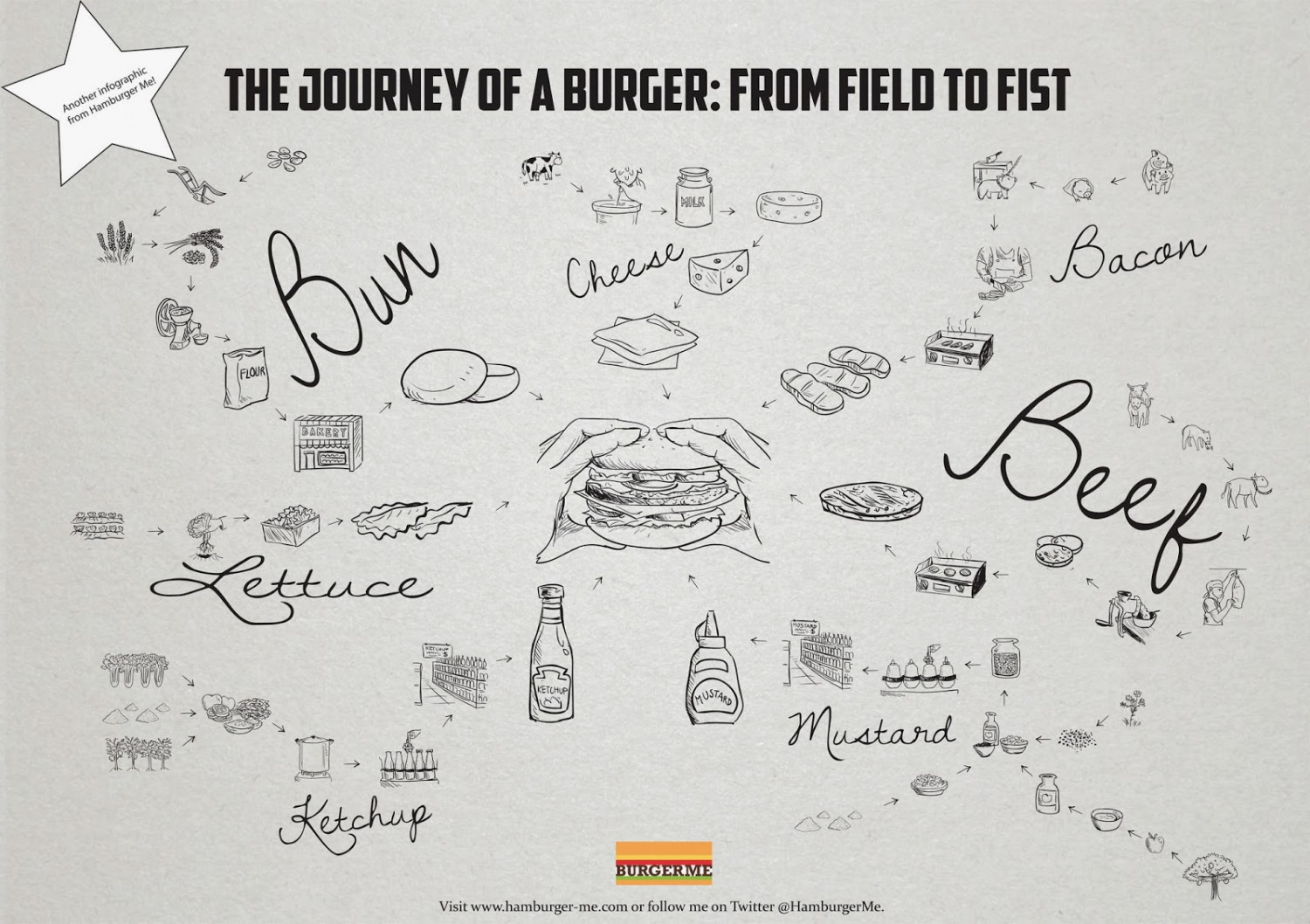 Journey of a burger: From field to fist Infographic