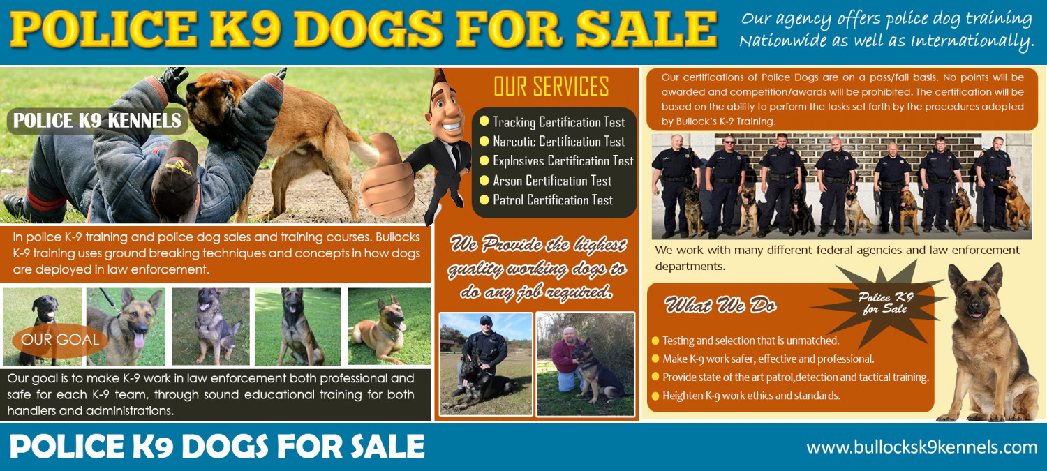 k9 police dogs Infographic