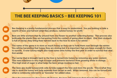 Keeping Bees Could Save Your Life During The Apocalpse Infographic