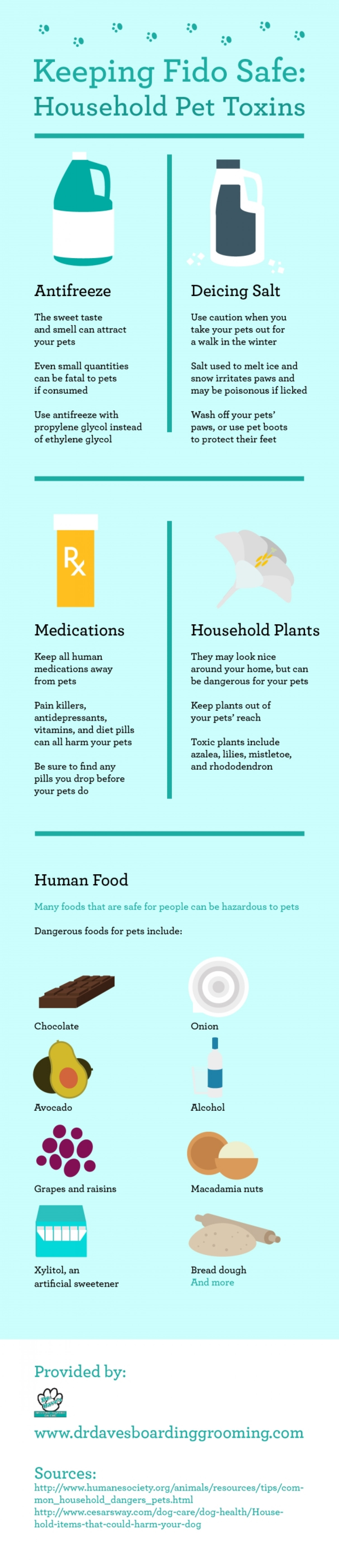 Keeping Fido Safe: Household Pet Toxins Infographic