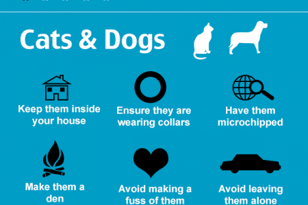 Keeping Pets Safe on New Years Eve Infographic