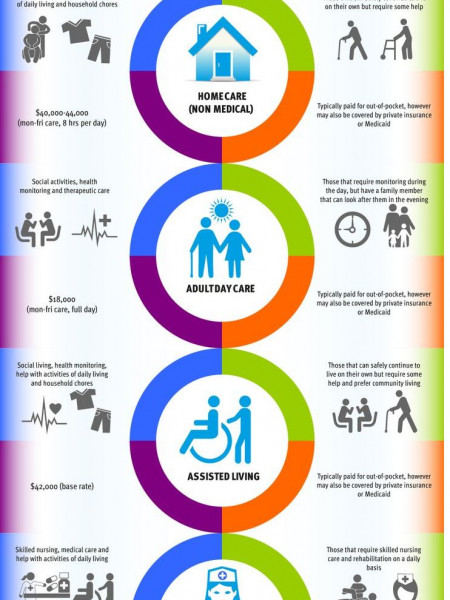 Senior Care Options Infographic