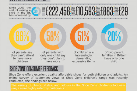 Kids are Expensive Infographic