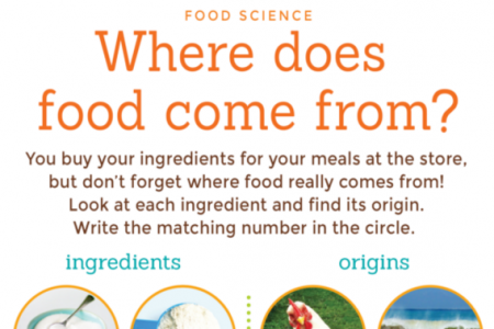 Kids! Where Did That Food Come From? Infographic