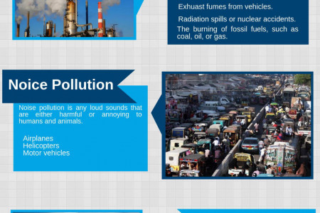 Kinds of Environmental Pollutions Infographic