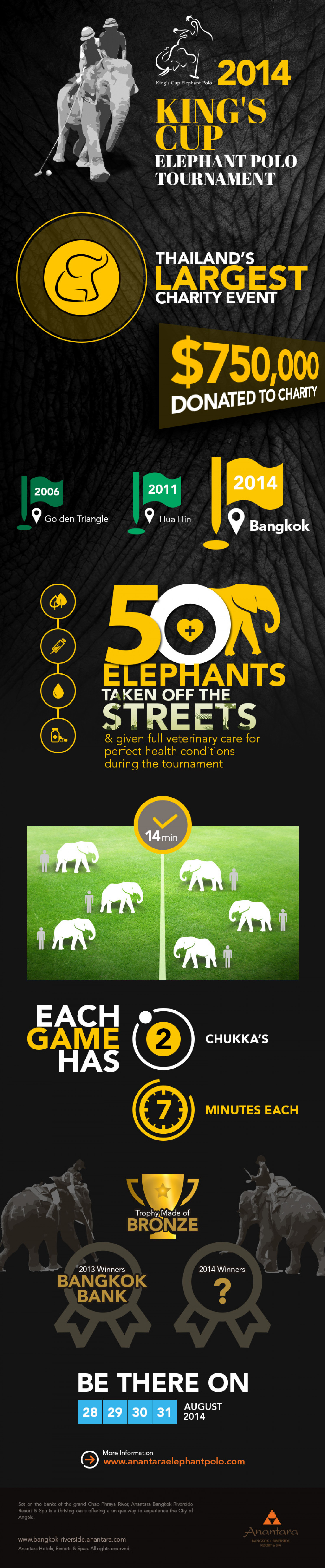 King's Cup Elephant Polo Tournament Infographic