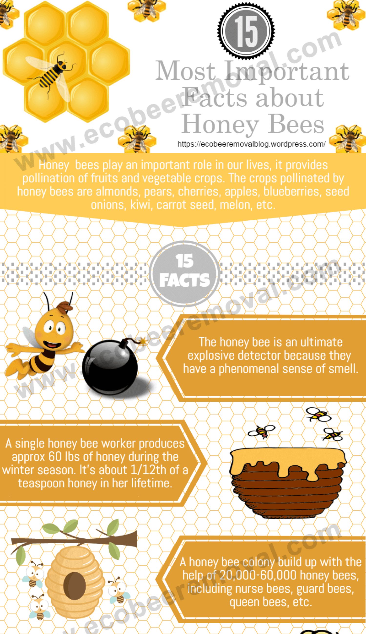 20 explosive facts