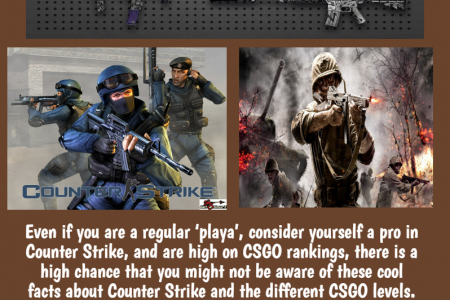 Know Top fact in Counter Strike: GO Infographic