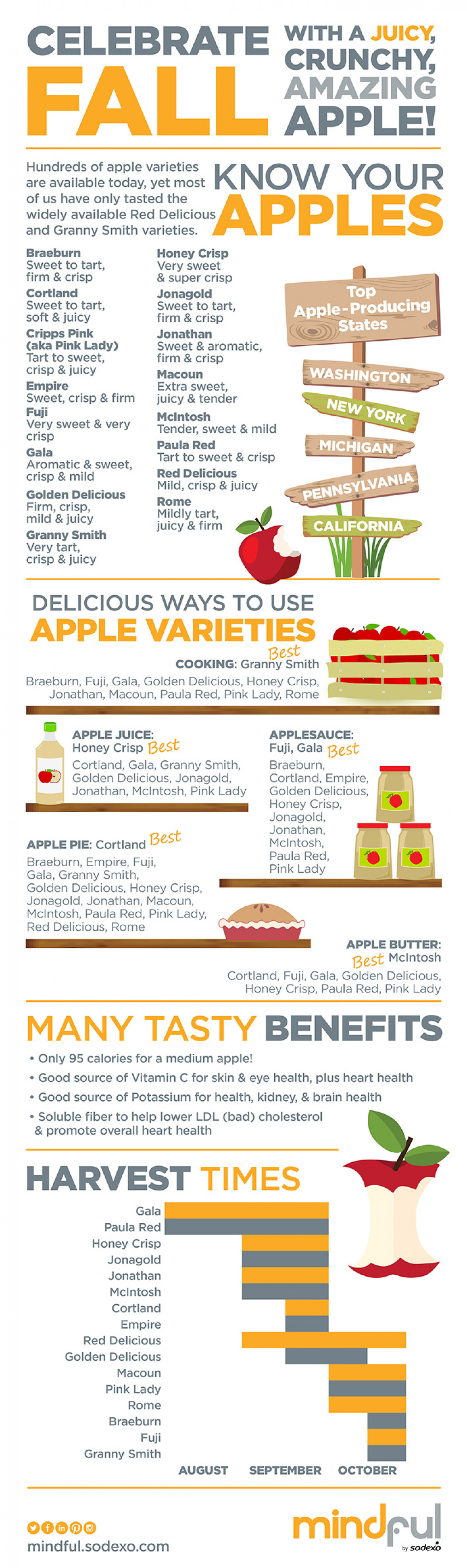 Know Your Aples Infographic