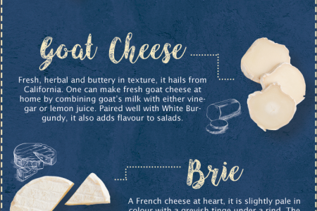 Know Your Cheese: A Detailed Dossier Infographic