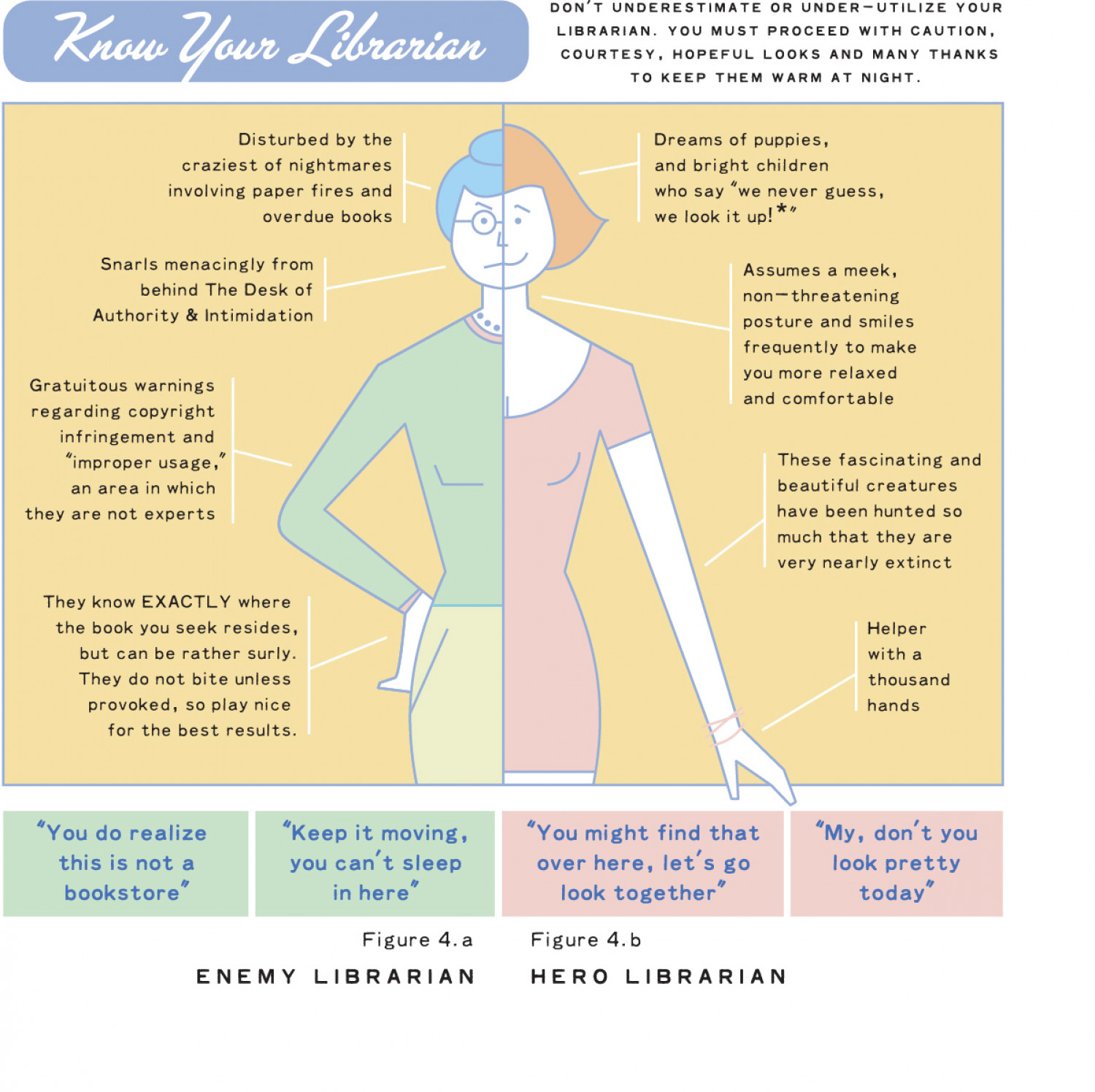 Know Your Librarian Infographic