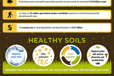 Land and Soil Infographic