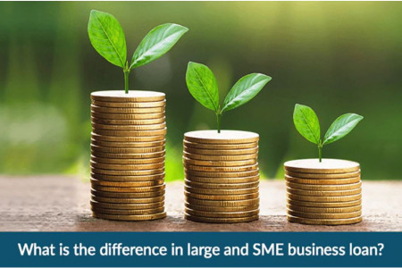 Large vs SME Business Loans: Know the Key Differences Infographic