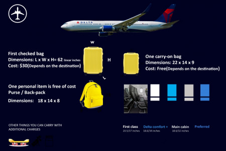 Latest information about delta airlines baggage policy Infographic