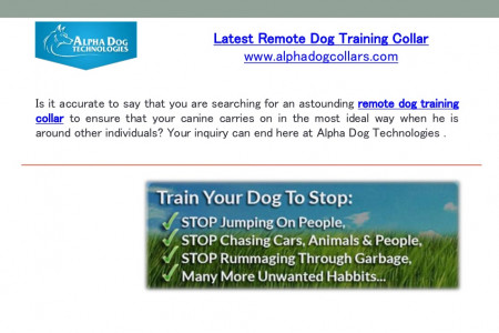 Latest remote dog training collar Infographic