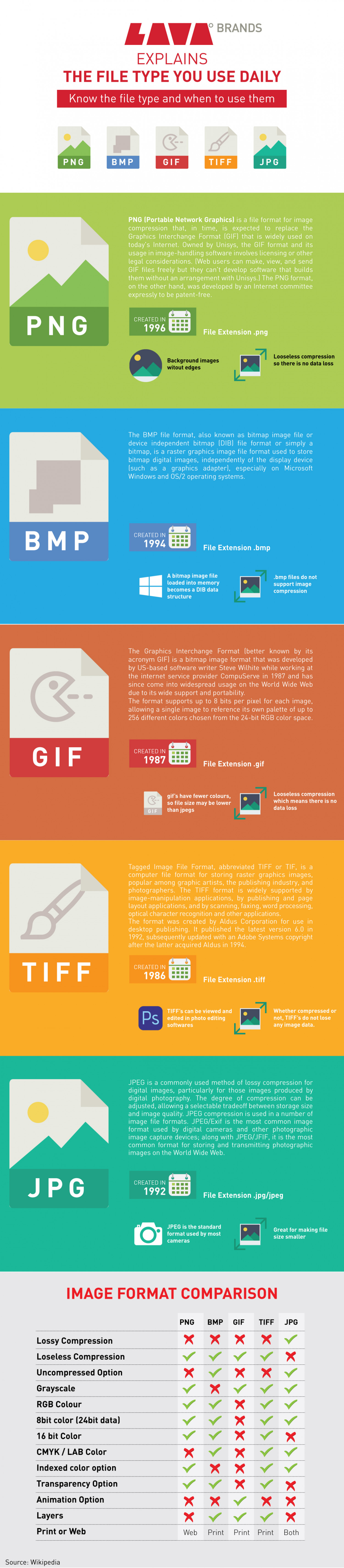 """LAVA Brands EXPLAINS ~ """" THE FILE TYPE YOU USE DAILY """" Infographic"""