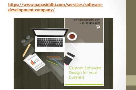 Leading Software Development Company India Infographic