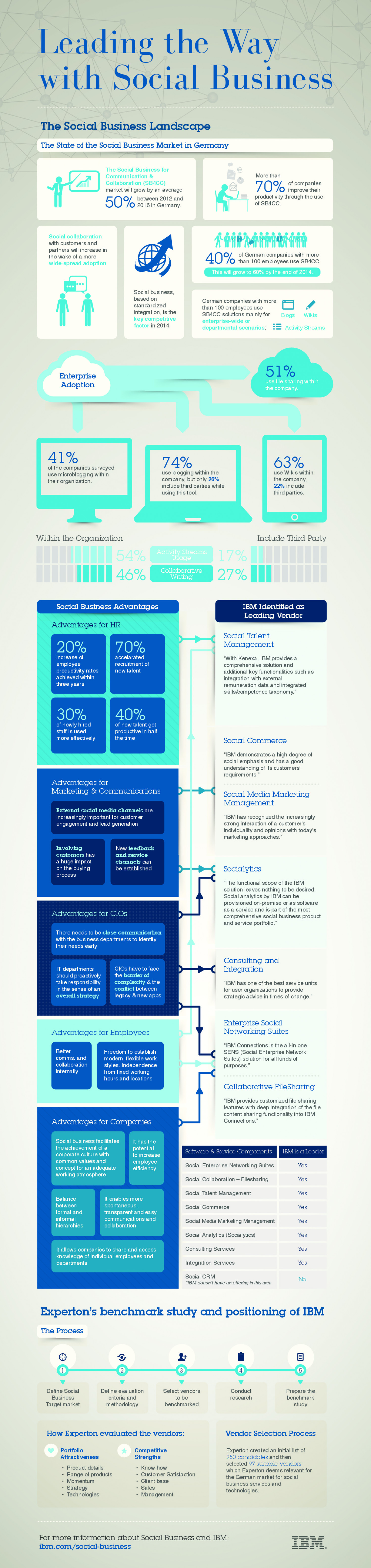 Leading the Way with Social Business Infographic
