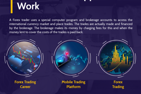 Learn How Forex Trading Works & Make Money by 70trades Infographic