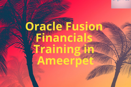 Learn Oracle Fusion Financials Training in Ameerpet Infographic