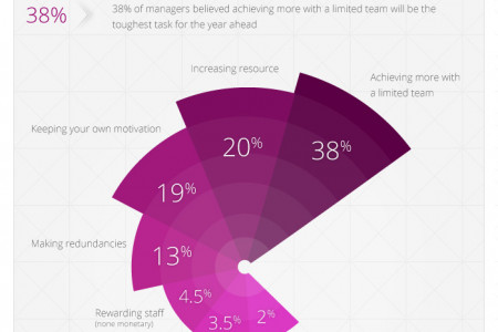 Legal Salary Survey 2013 Infographic