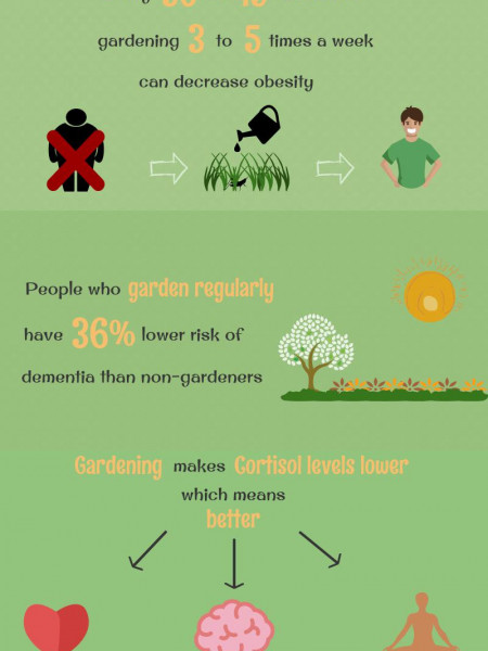 Let's Garden For Healthier Mind And Body Infographic