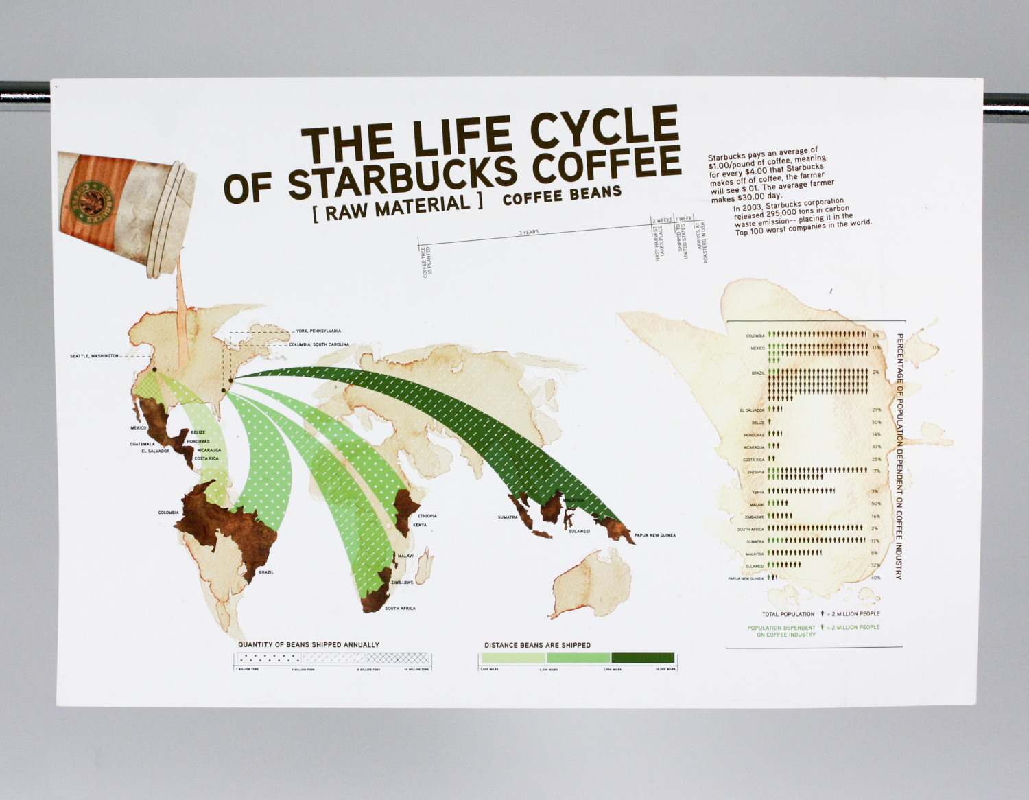 life cycle of starbucks coffee ly life cycle of starbucks coffee infographic