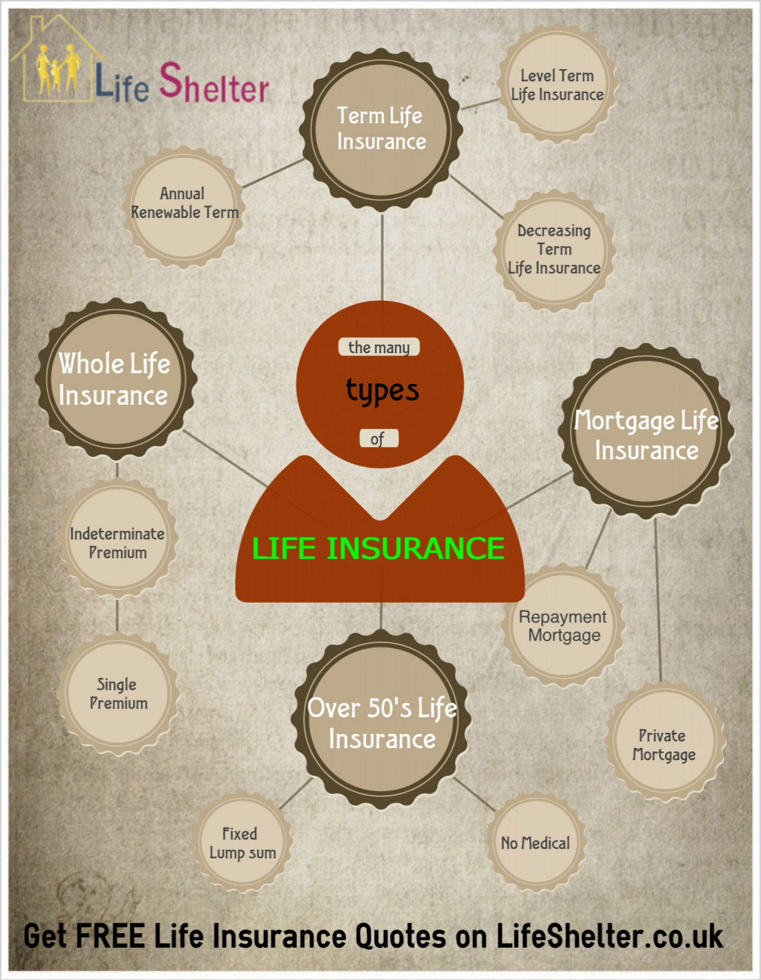 Level Term Life Insurance Quotes Life Insurance  Different Types Of Life Insurance  Visual.ly