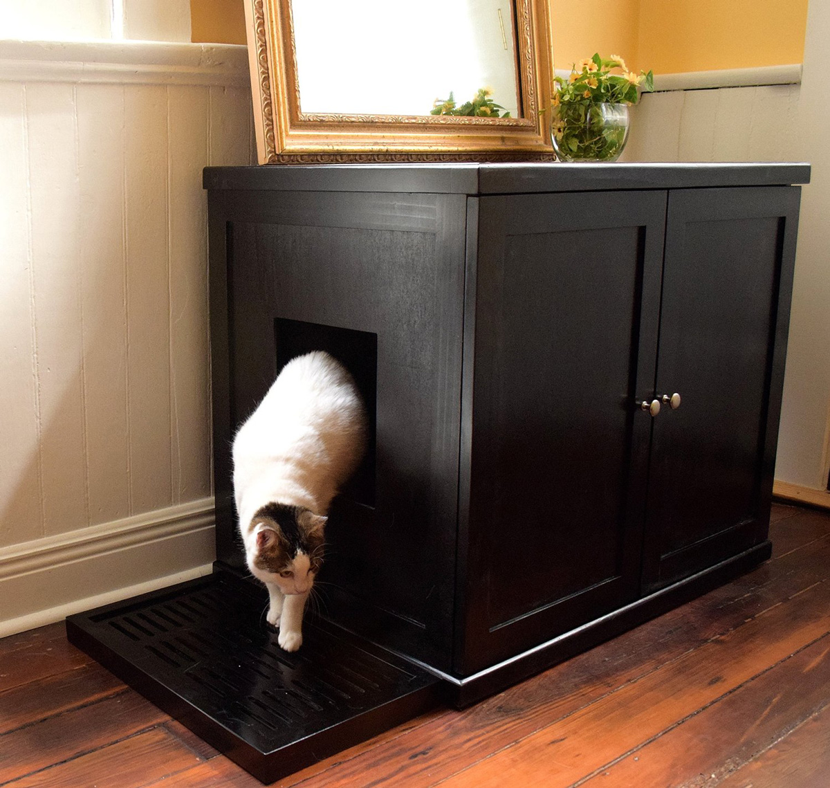 Litter Box Furniture Visual Ly