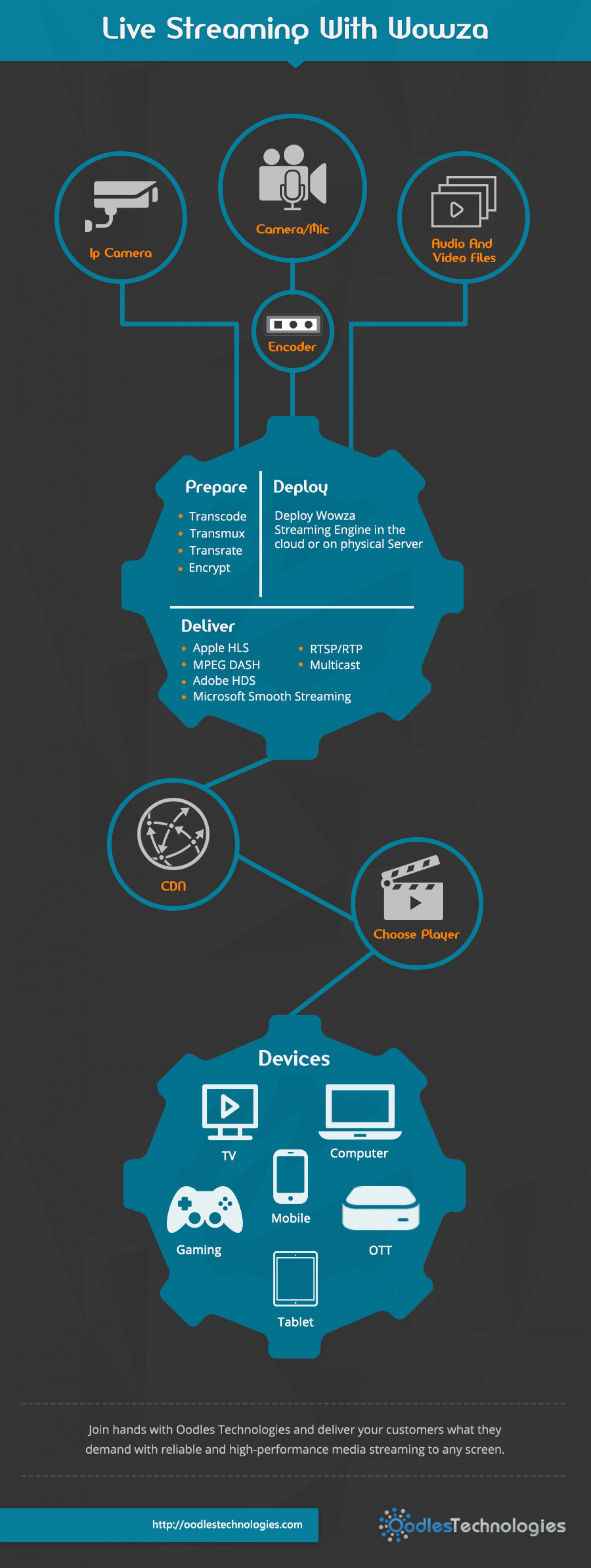 Live Streaming With wowza Infographic