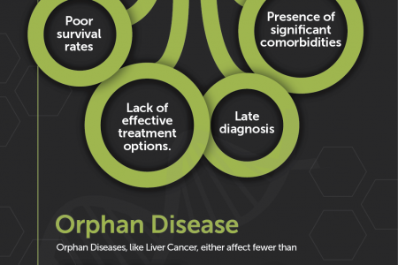 Liver Cancer: Development Pipeline Infographic