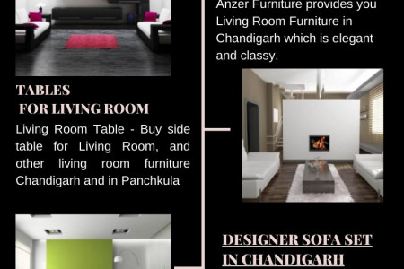 Living Room Furniture in Chandigarh Infographic