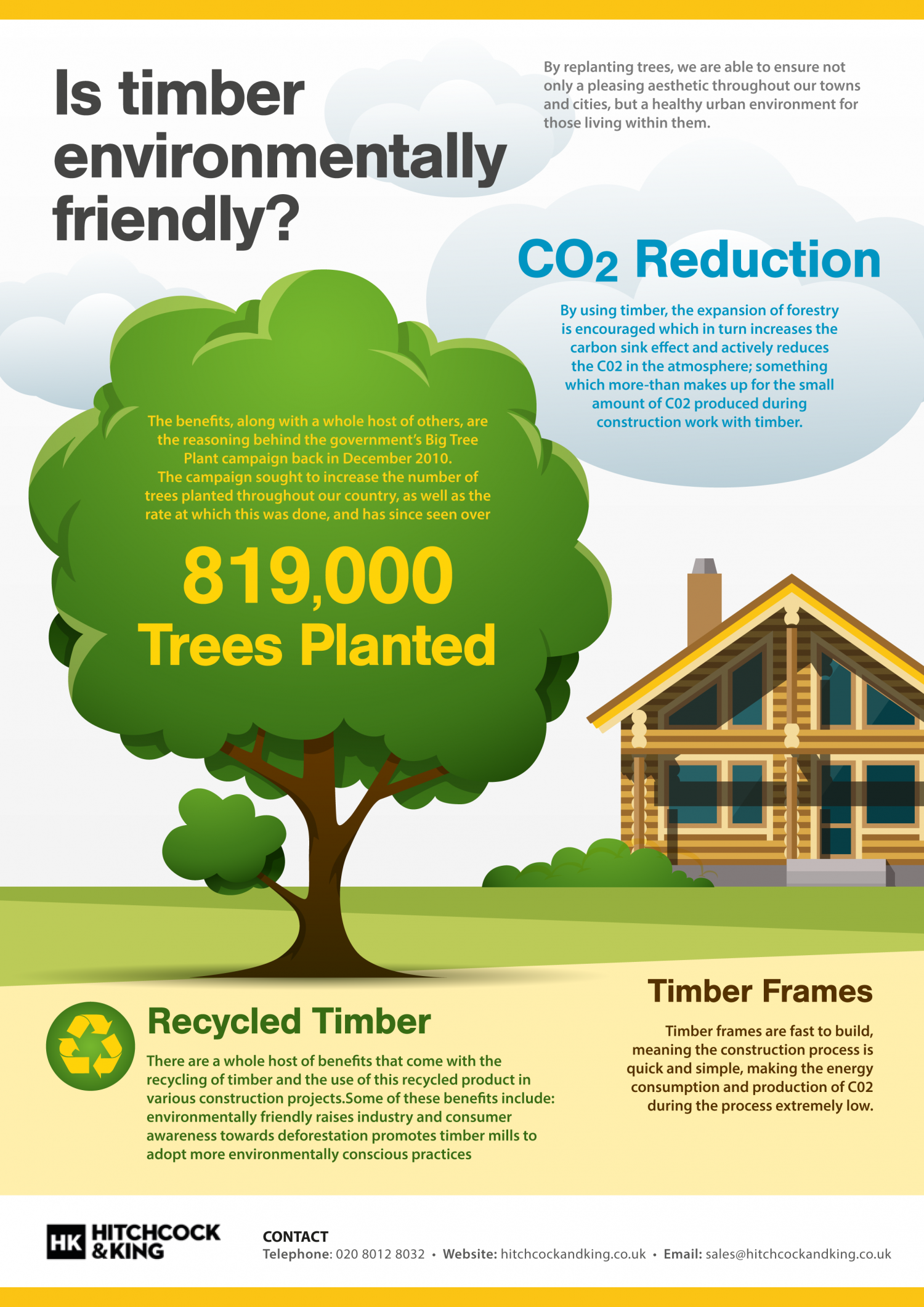 Is timber environmentally friendly? Infographic